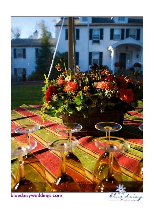 Vineyard theme wedding celebration in Greenwich, Connecticut
