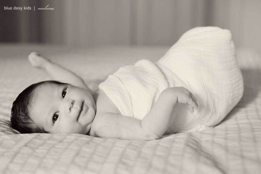 new york newborn portraits