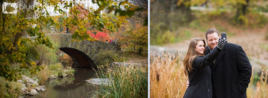 Gapstow bridge Central Park proposal