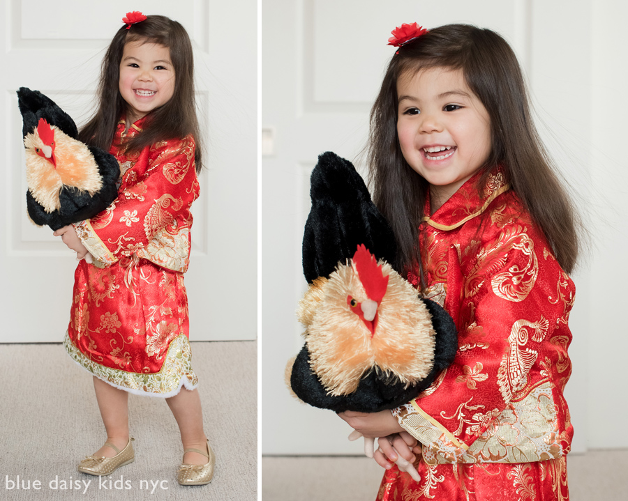 Chinese new year portrait with rooster