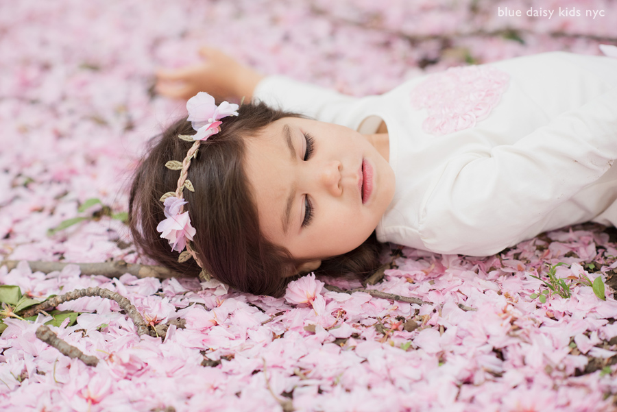 laying down on sakura cherry blossoms